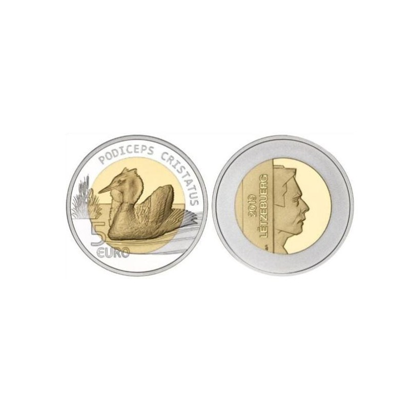 Luxemburg 2019 5 euro 'Fuut'Proof