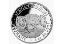 Somalië 2020 100 Shillings 1 Ounce zilver Proof Olifant