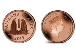 Falkland Islands 2019 1...