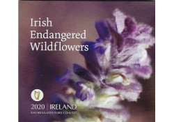 Bu set Ierland 2020