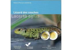 Luxemburg 2021 5 euro...