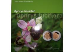 Luxemburg 2012 5 Euro Orchidee Proof